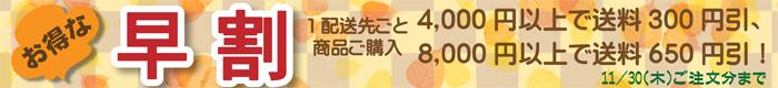 2017winterhayawari2.jpg