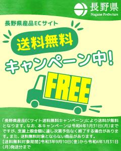 nagano_ec_g1.jpg